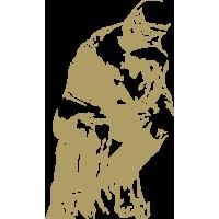 GZS zlato nacionalno priznanje za inovacijo leta ROTO 450s